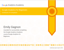 Gagnon, E. ( 3 April 2017). Beginners Certification [Screenshot].